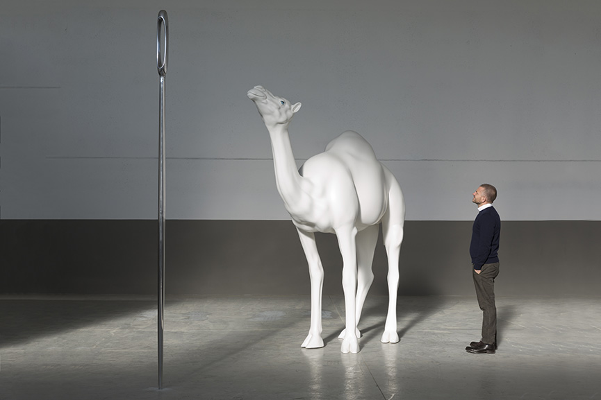 Camel (Albino) Contemplating Needle (Large), 2013