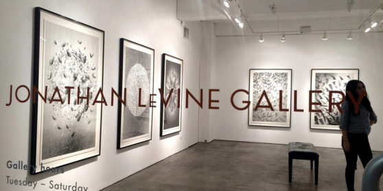 JONATHAN LEVINE PROJECTS