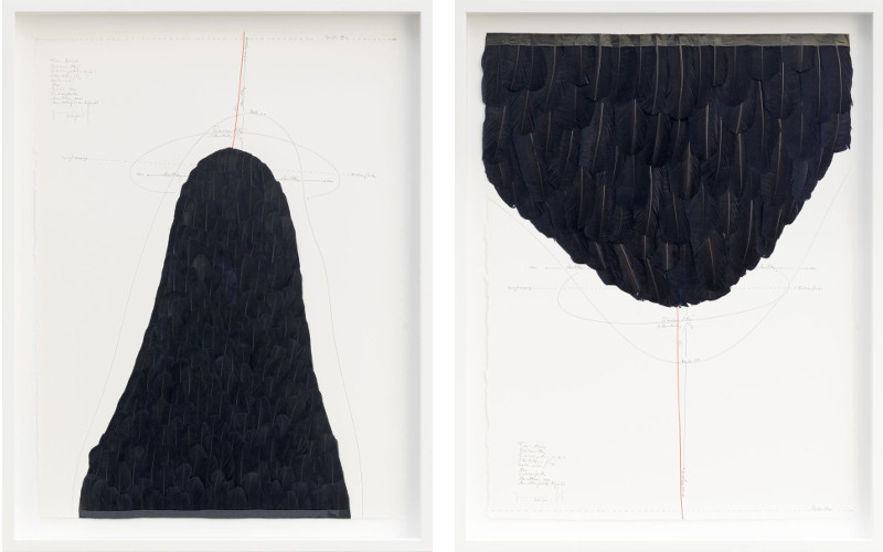 Jorinde Voigt works - From Behind ink, goose feathers, oil crayon, India ink, pencil on paper 2015 (Left) / From Aboveink, goose feathers, oil crayon, India ink, pencil on paper 2015 (Right) - policy