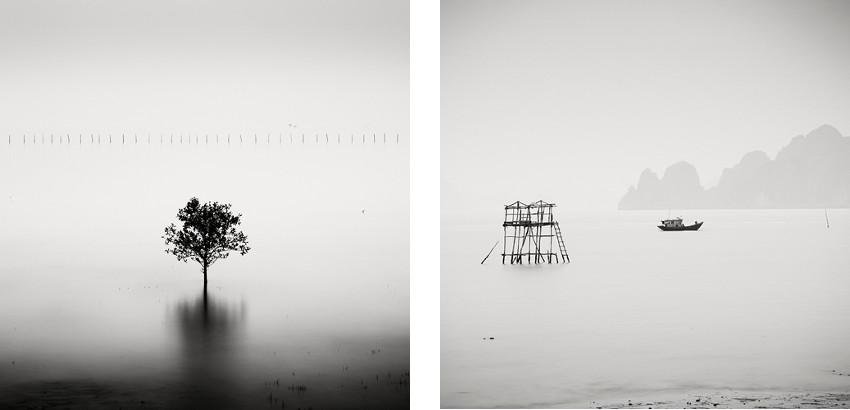 Josef Hoflehner - Mangrove Tree - Vietnam, 2007 (Left) / Abandoned Hut - Vietnam, 2012 (Right) - copyright © Josef Hoflehner