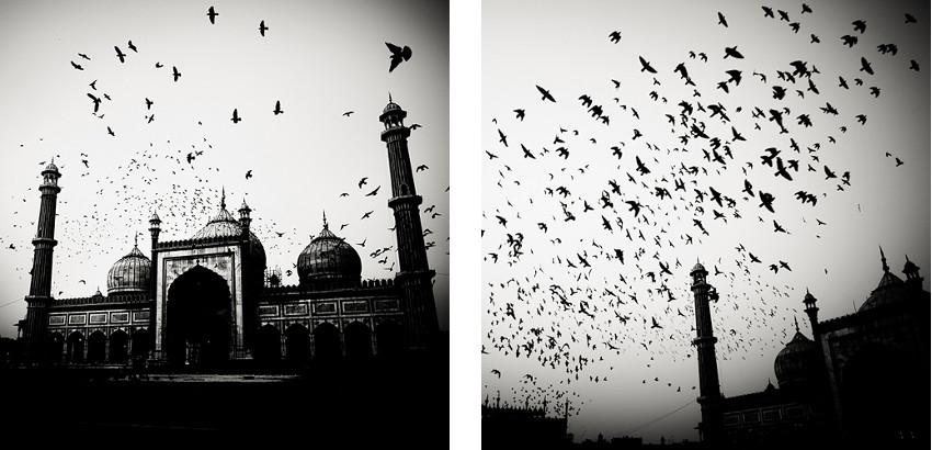 Josef Hoflehner - Mosque and Birds - India, 2007 (Left) - Exodus I - India, 2007 (Right) - copyright © Josef Hoflehner