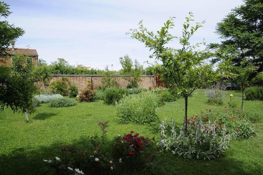 Judi Harvest, Honey Garden, Photo Claudio Franzini