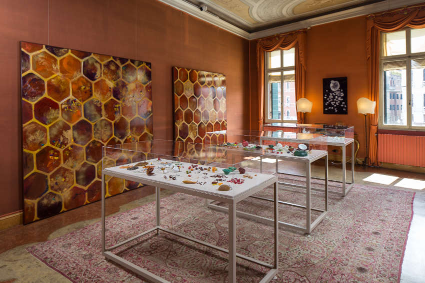 Judi Harvest - Propagation Bees Seeds, 2017 Venice Biennale at Palazzo Tiepolo