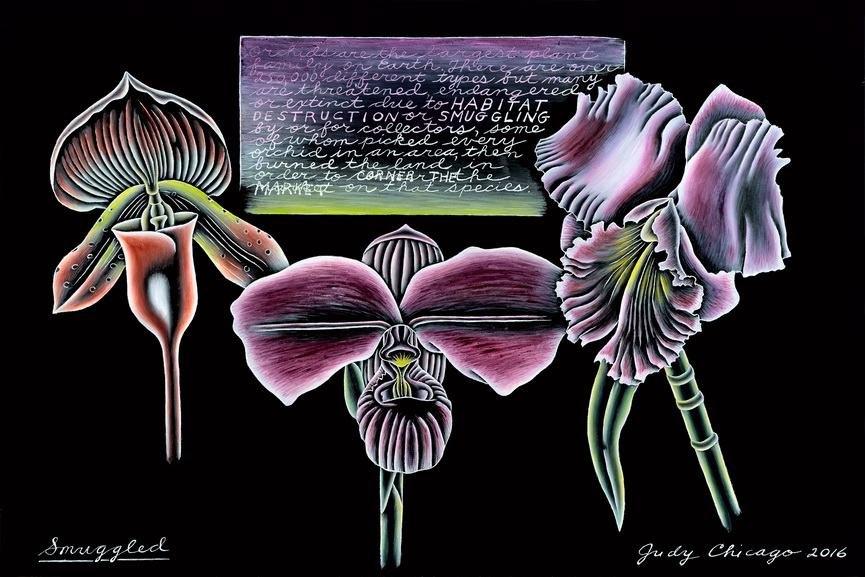 Judy Chicago - Smuggled