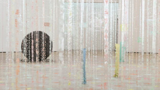 Karla Black - Installation view, Kestnergesellschaft, Hannover - photo by Simon Vogel