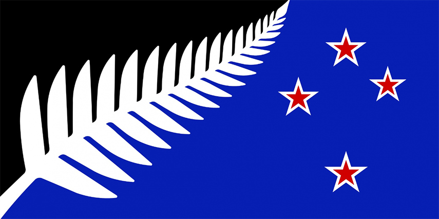 Silver Fern design for New Zealanders Flag 2015