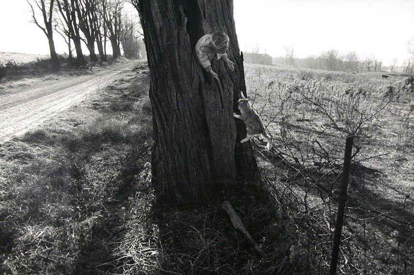 Larry Towell, Black Locust Tree, Lambton, Ontario, Canada, 1990