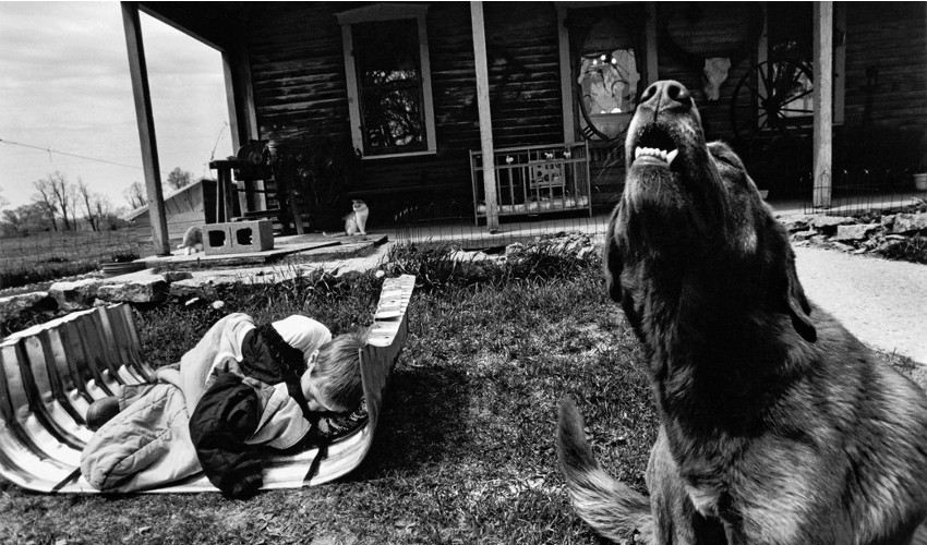 Larry - CANADA. Lambton County, Ontario. Noah TOWELL, who has a fever, laying in an uninstalled basement window well in the spring season. His dog Banjo is barking. Two cats and Isaac's playpen, 1995 (detail), press about photo books