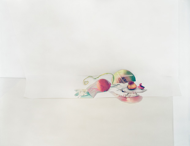In terms of material Laura Letinsky's current series is made from Archival pigment print and Hanhemule paper