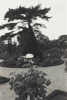 Lee Friedlander-Photographs of Flowers-1975