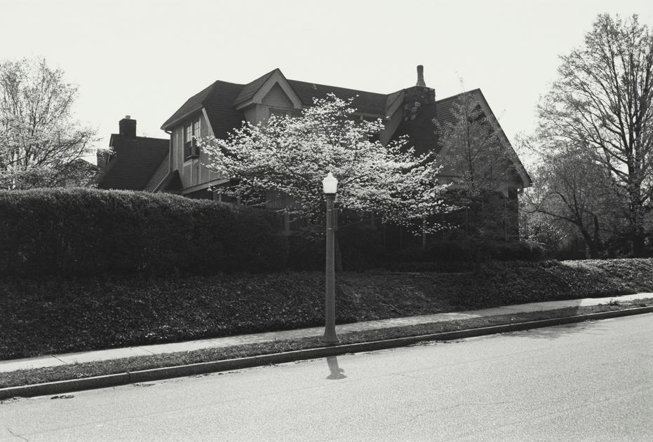 Lee Friedlander-Selected Images-1982