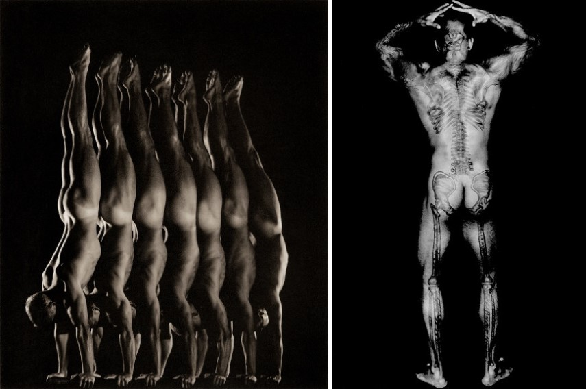 Left Anderson & Low - Danish National Gymnastic Team Right Dianora Niccolini - Ronaldos Skeletal Back