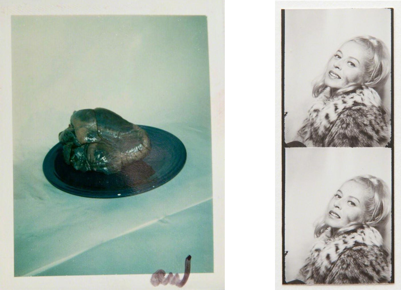 Left Andy Warhol - Heart on Plate Right Andy Warhol - Placeholder Holly Solomon (photobooth strip)