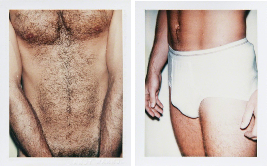 Left Andy Warhol - Torso Right Andy Warhol - Sex Part