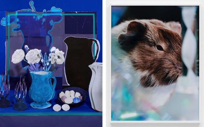 Daniel Gordon - Blue Still Life with White Peonies, Eggs and Onions, 2019, Josephine Pryde - Scale XXXV, 2012.