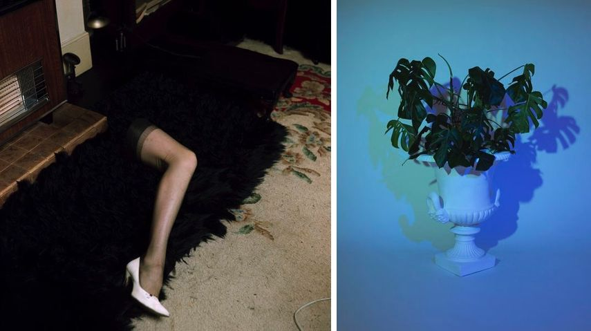 Eva Stenram - Part 2, 2014, Mathew Tom - Plant I, 2014