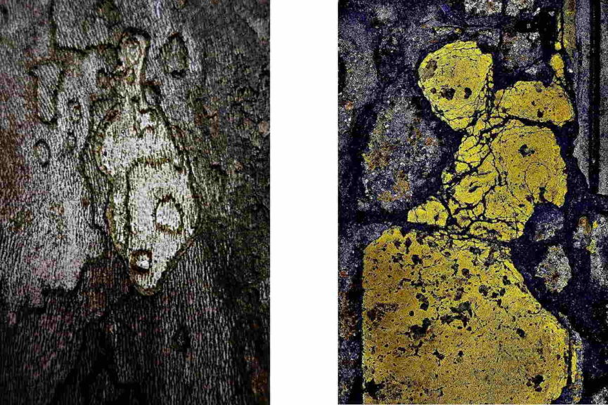 Left Graham Fink - Tree Alien. Right Graham Fink - Yellow Monk. Images courtesy of the artist.