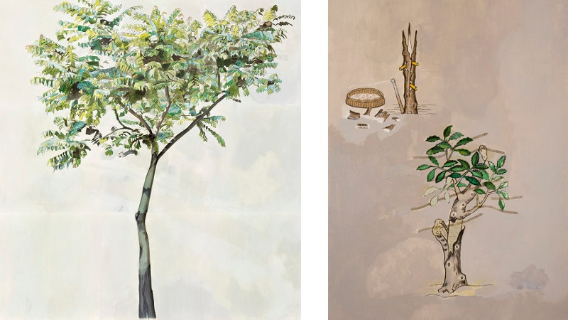 Left Halley Cheng - A Tree In Austin Road, 2015, Right Halley Cheng - The Lui`s solution of concocted herbal - borneol & birth`s skin, 2015