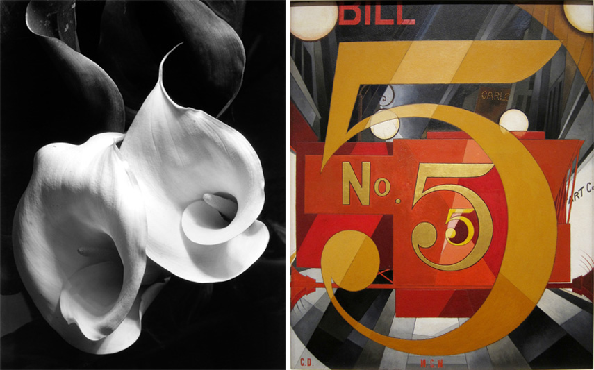 Left Imogen Cunningham - Two Calla Lilies, c. 1925 Right Charles Demuth - I Saw the Figure 5 in Gold, 1928