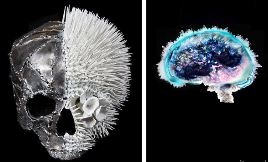 Lauren Baker - Metalis, 2013 (Left) /   Crystal Brain, 2013 (Right) - Photo Credits: Artist
