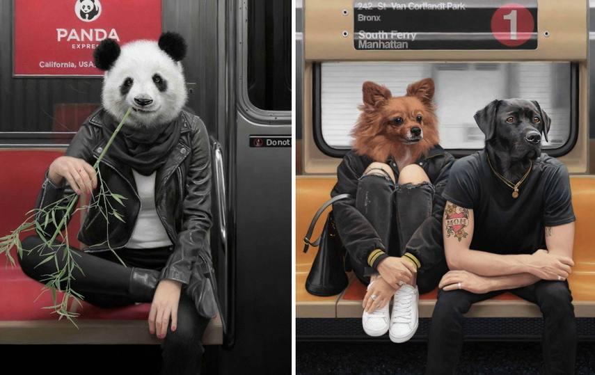 Left Matthew Garbelsky - The Panda Express Right Matthew Garbelsky - Van Cortlandt Park