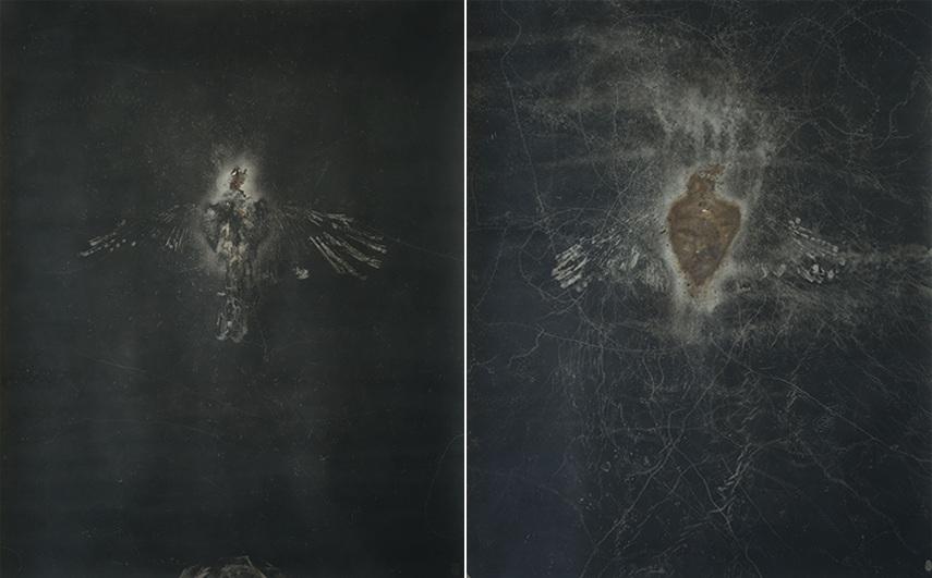 Maximilian Prüfer exhibition Lisabird contact facebook