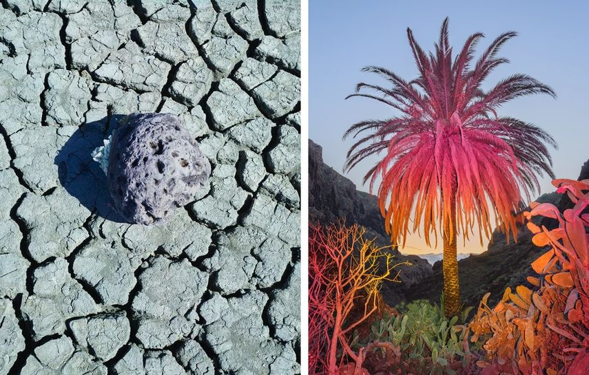 Michael Lundgren - Coral and Crystal on Desiccated Mud, from the series Geomancy, 2018, Inka and Niclas - K4 Ultra HD II, from the series K4 Ultra HD, 2018
