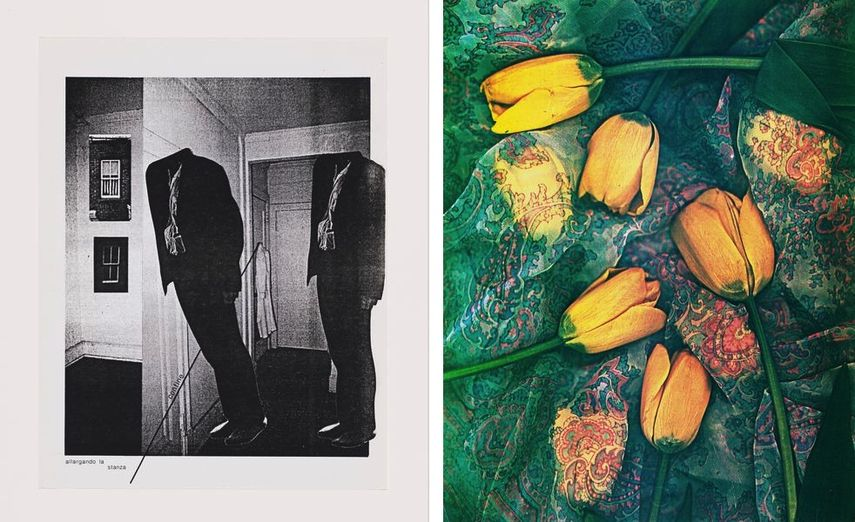 Rebecca Stuckey, Uso Della Parete, 1986, Walter Zimmerman, Floral Study to Italy, 1986