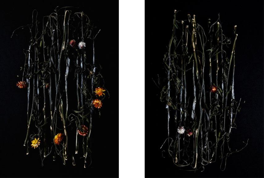 visit the artist's facebook