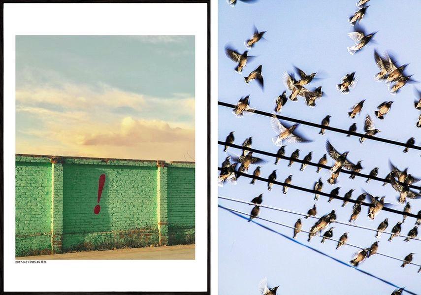 Yang Maoyuan - Shunyi, 2017, Yoshinori Mizutani - The Birds, 2015