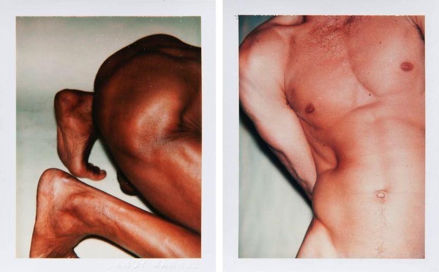 Torsos and Sex Parts, 1977