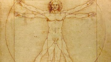 Leonardo da Vinci - Vitruvian Man (detail), circa 1492, a history work relating man and nature