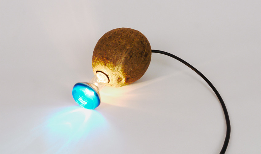 Lindsay Lawson - Organic Coconut, 2012