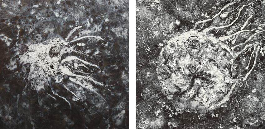Ling Pui Sze CC - Absorbing, 2013 - mixed media on canvas - 120 x 120cm (Left) / Tracing, 2013 - mixed media on canvas - 140 x 140cm (Right) - new ink