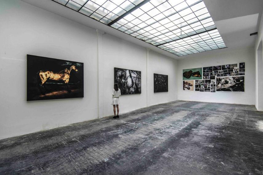 Lisa Kandlhofer at Lisabird Gallery