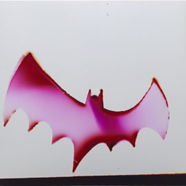 Liz Nielsen-Pink Bat-2015