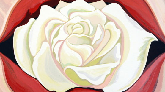 Lowell Nesbitt - White Rose, 1983 (detail)