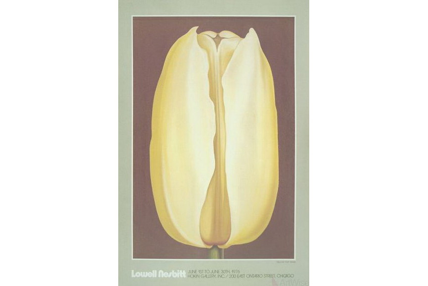 Lowell Nesbitt -Yellow Tulip