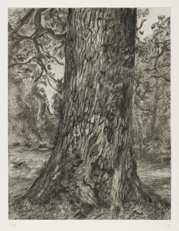Lucian Freud-After Constable's Elm-2003