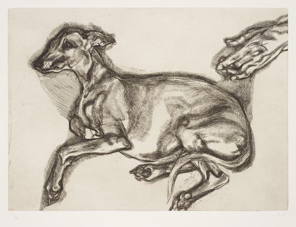 Lucian Freud-Pluto Aged 12-2000
