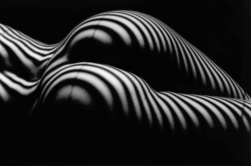 Lucien Clergue picasso 2014 new contact home arles