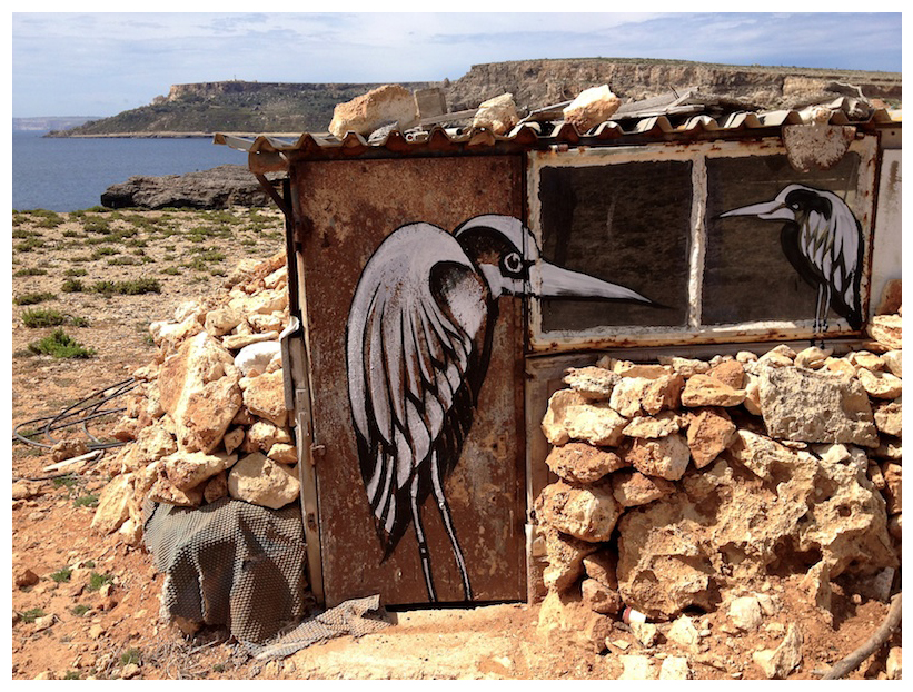 Lucy McLauchlan - Ghost Gone Birds at Malta, 2012