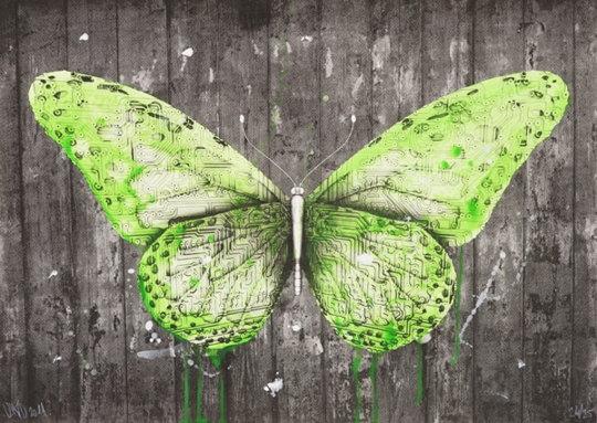 Ludo-Butterfly-2011