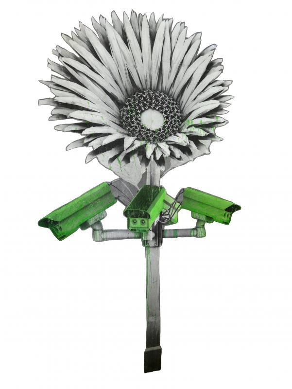 Ludo-Flower Camera-