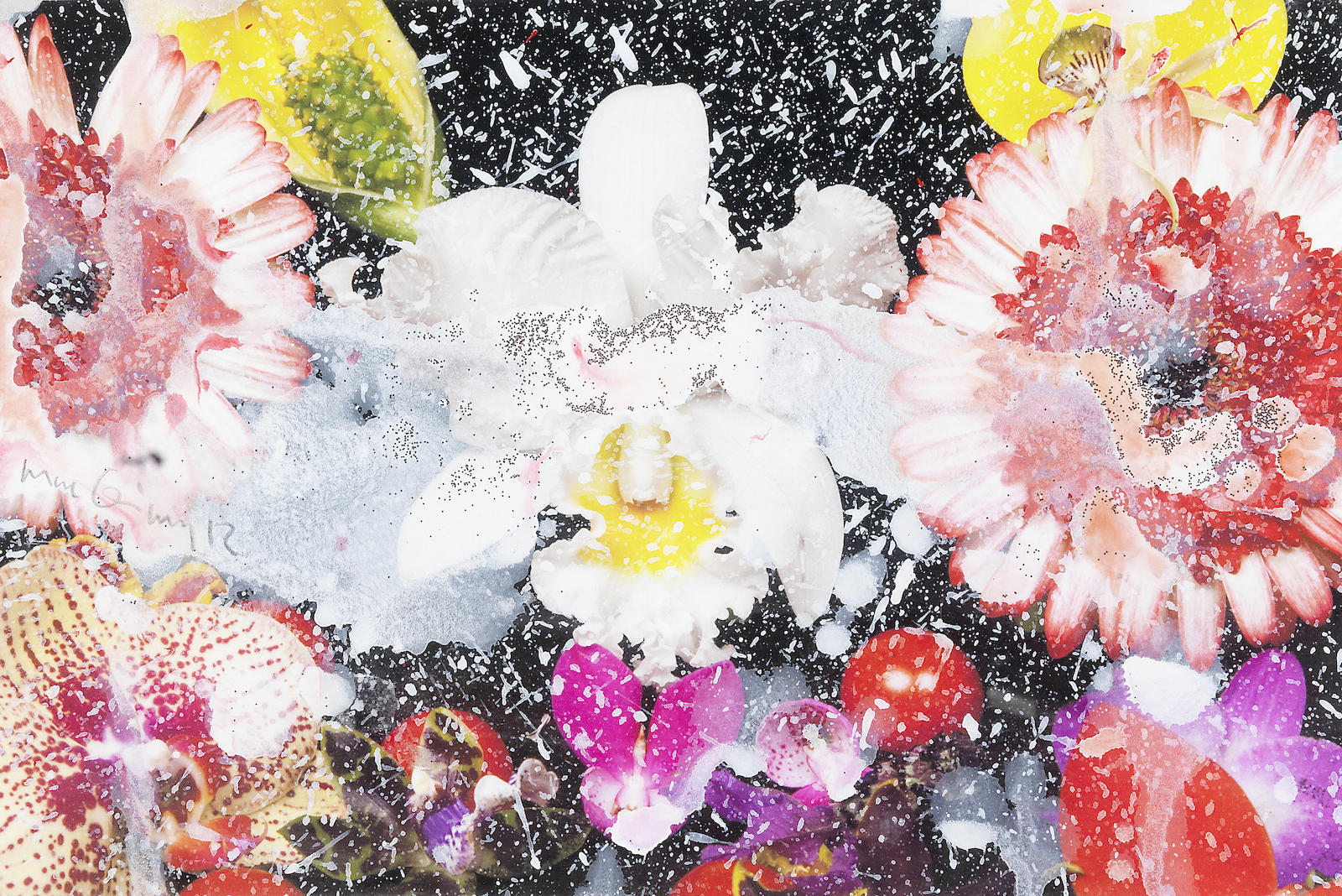 Marc Quinn-Untitled, from Stardust Series-2012