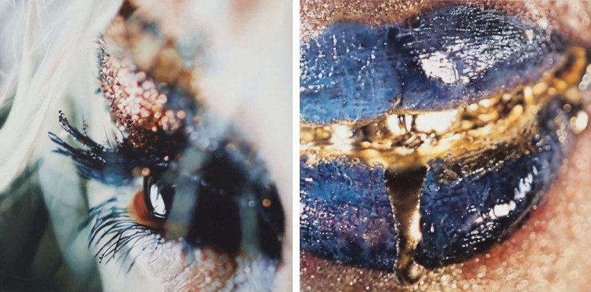 Marilyn Minter - Bottle Blonde #2, 2006 (Left) - Dribble (Wangechi Mutu), 2010 (Right), like, projects, contact, pink, press, shows, privacy