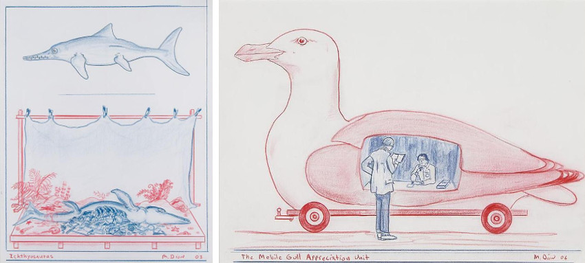 Mark Dion - Ichthyosaurus, 2003 (Left) - The Mobile Gull Appreciation Unit, 2006 (Right), art21 slider shop, modern nature museum in new york, new museum slider, bedford