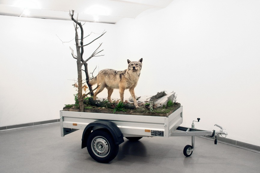 Mark Dion - Mobile Wilderness Unit - Wolf, 2006