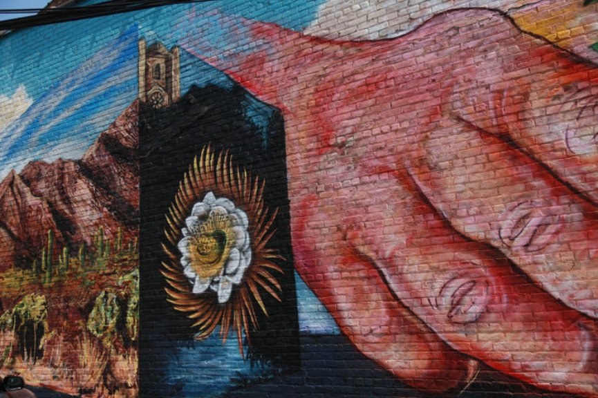 Savage Habbit Mural Project