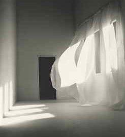 Mayumi Terada-CURTAIN010416A-2001